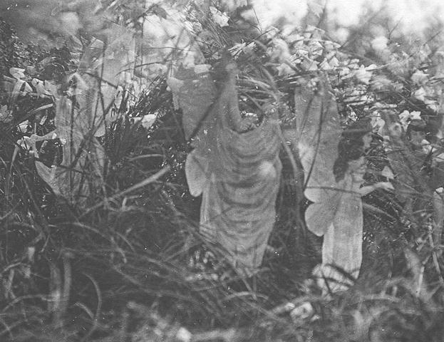 The fifth and last Cottingley fairy photograph, claimed to be authentic by Frances. Taken in 1920. Photo:wikipedia
